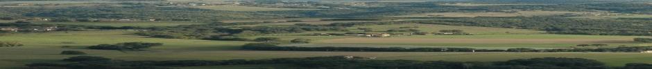 paysage de polyculture-élevage