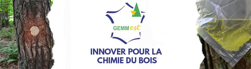Bandeau gemm_est