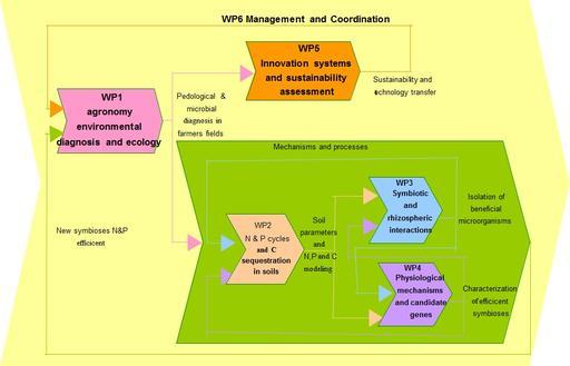 FTM plan2