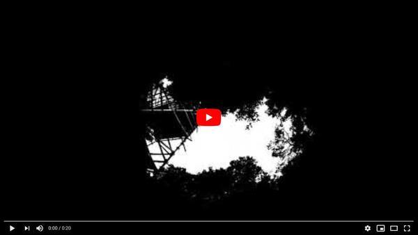 Capture video FB19