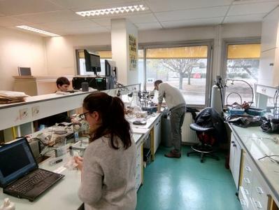Hydraulic measurements at the Plant Hydraulic Lab