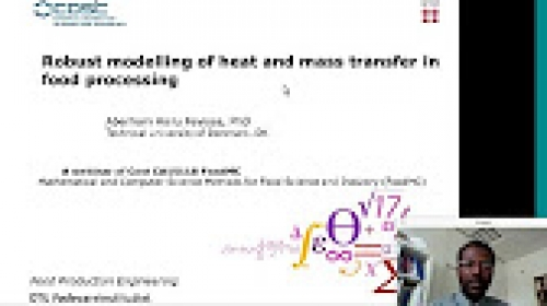 08 - Robust Modelling of Heat and Mass Transfer in Food Processing (Aberham Hailu Feyissa)