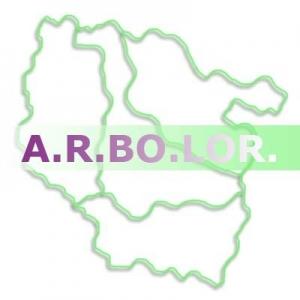 logo ARBOLOR