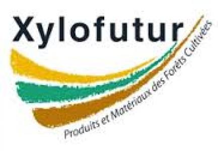 Logo Xylofutur