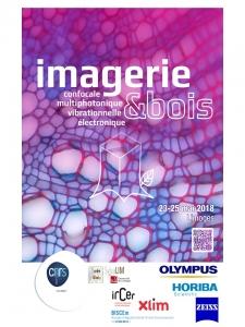 Ecole microscopie