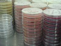 microbio 2