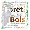 Logo Forêt Bois