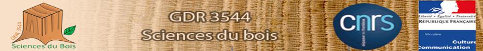 Bienvenue sur le site GDR-Bois 3544 Sciences du Bois