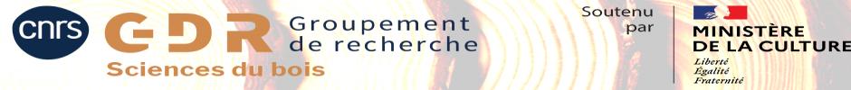 Bienvenu sur le site du GDR Sciences du Bois