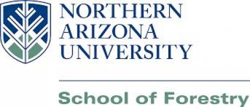 logo Arizona University