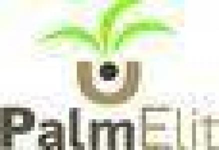 logo palmelite