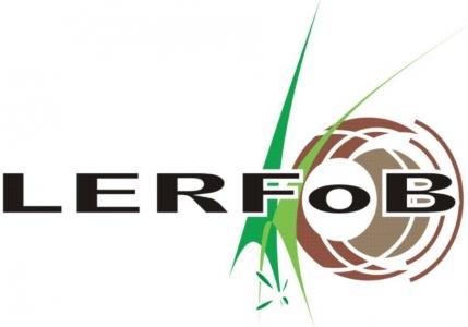 logo LERFoB