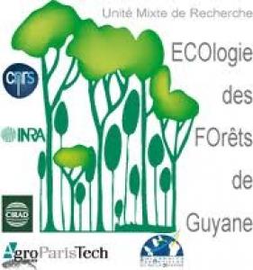 logo Ecofog
