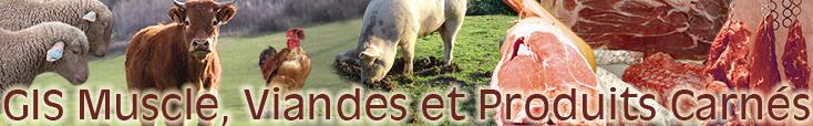 Bienvenue sur le site GIS Viande et Produits Carnés de l'INRA