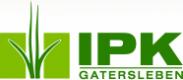 Logo IPK