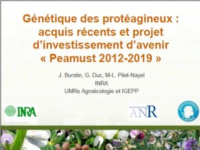 Photo du diapositif introductif de la présentation du projet Peamust