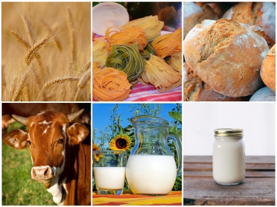 De l'agriculture à l'alimentation