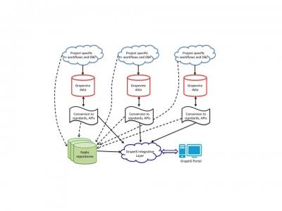 Grapevine Open Data