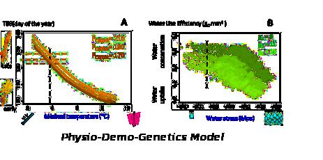 Modèles et simulateurs
