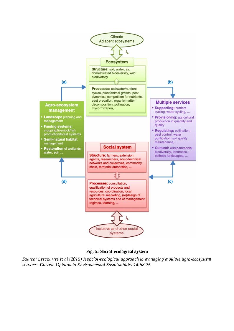 social ecological system