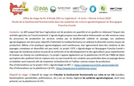 Offre de stage sur la biodiversité fonctionnelle à pourvoir !