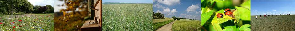 """Bienvenue sur le site du projet I-Site """"agroécologie en Bourgogne Franche-Comté"""""""