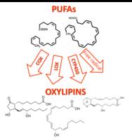 oxylipins 2