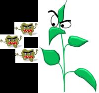 Plante gauche