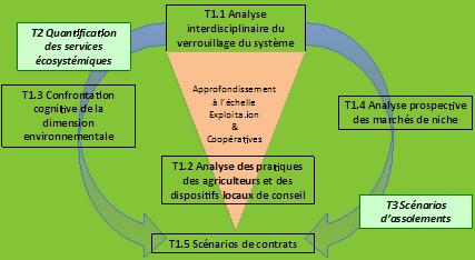 Schéma organisationnel de la tâche 1