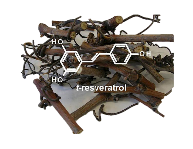 illustration t-resveratrol
