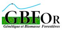 logo GBFOr