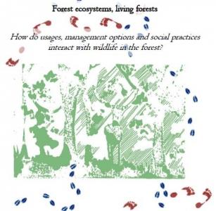 colloque internationa habitats forestiers