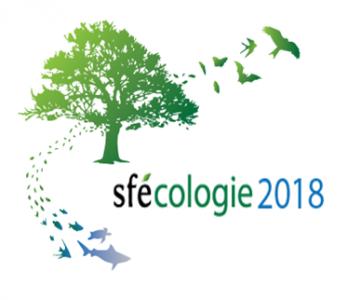 logo Sfecologie