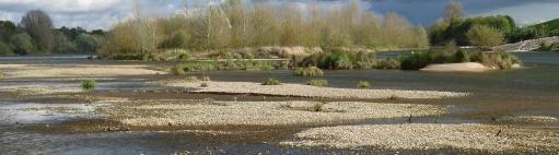 Banc de sable en Loire