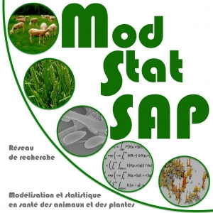 5th ModStat SAP
