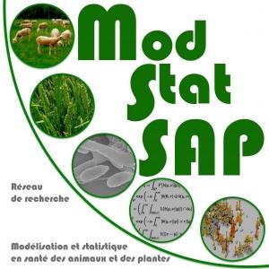 5th ModStat SAP