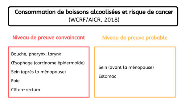 Localisation de cancers - Consommation alcool France 2019