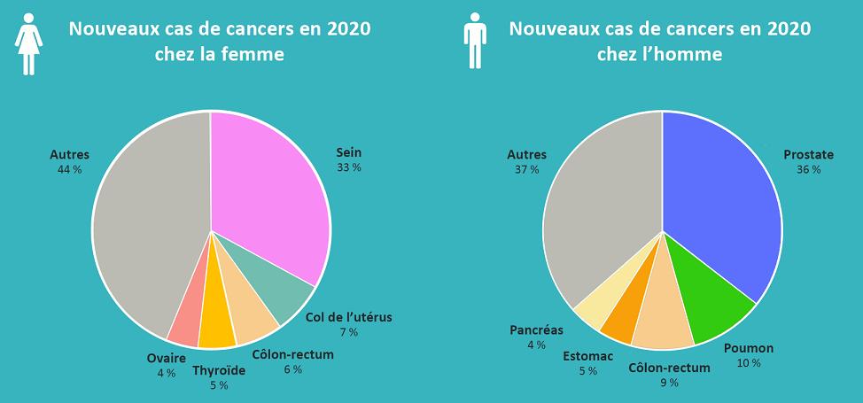 Graphique Cancers en Guyane