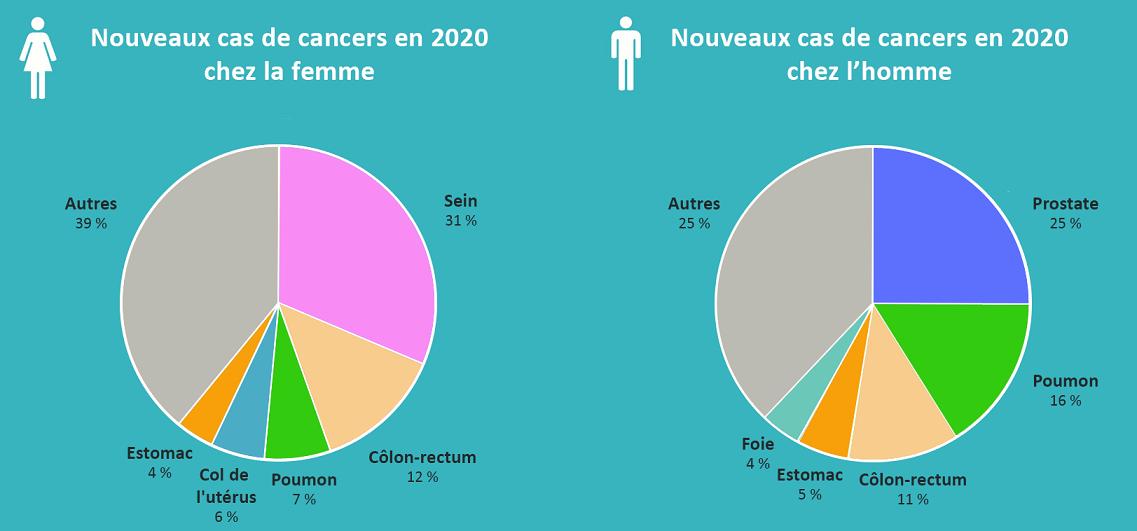 Graphique Cancers à la Réunion