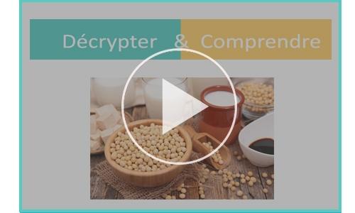 decrypter comprendre soja cancer sein