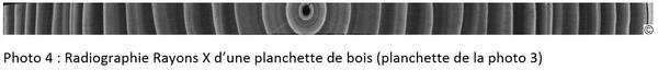 Radiographie Rayons X d'une planchette de bois