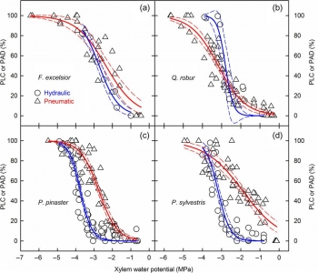 Art3-Stem vulnerability curves of two ring-porous species and two conifer species