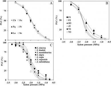 Art4-Xylem vulnerability to cavitation of Persian walnut cultivars, hybrids, and species