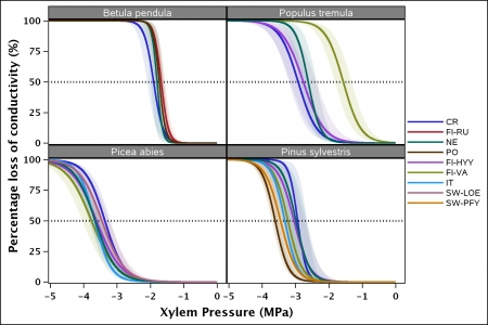 Xylem vulnerability curves for each population of the four species studied