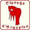 Elevage d'Arquetan