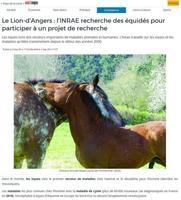 Haut-Anjou