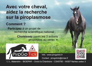 Pirogotick_flyer_recto
