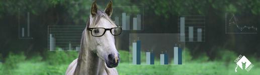 Sciences équines