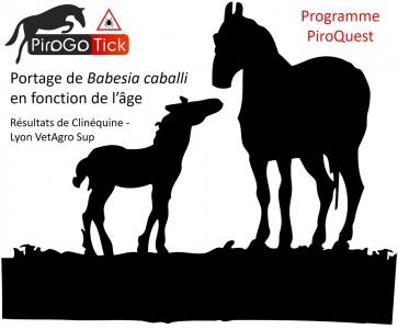 PiroQuest : résultats préliminaires pour Babesia caballi