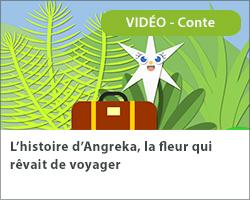 L'histoire d'Angreka, la fleur qui rêvait de voyager
